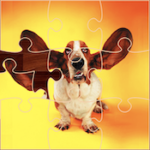 Puzzles Amusants de Chiens