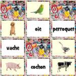 Les Animaux Domestiques en Français