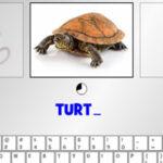Taper au Clavier: les animaux en Anglais