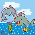 Erreurs et Différences avec les Animaux Marins