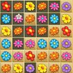 Fleur Candy Crush