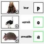 Les Initiales des Animaux en Anglais