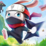 Ninja Rabbit: Le Lapin Ninja