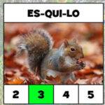 Compter le nombre de Syllabes en Portugais