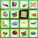Perception visuelle: trouver l'insecte