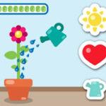 Prendre soin d'une Plante à fleurs