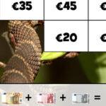 Puzzle avec des Billets de banque en euros