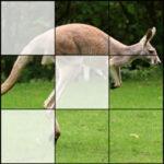 Puzzles 3×3 Animaux