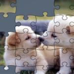 Puzzles en ligne de Chiens