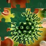 Puzzles de Coronavirus