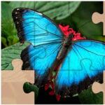Puzzles de Papillons