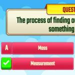 Quiz sur les Mesures (anglais)