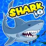 Shark .IO