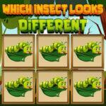 Trouver l'insecte Différent