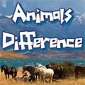 Trouvez les différences entre deux photos d'animaux